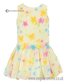 Sarah Louise Girls Lemon Floral Dress 010313